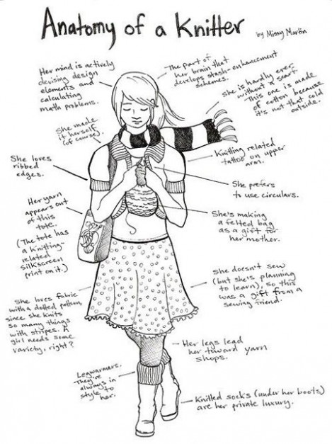 anatomy-of-a-knitter1